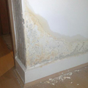 Plasterboard and timber can rot if left damp.